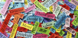 Google Çeviri'ye Kürtçe Dahil, 13 Dil Daha Eklendi