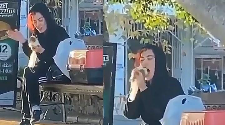Antalya'da Hamsterı tokatlayıp, ısırmaya kalkışan kişiye para cezası