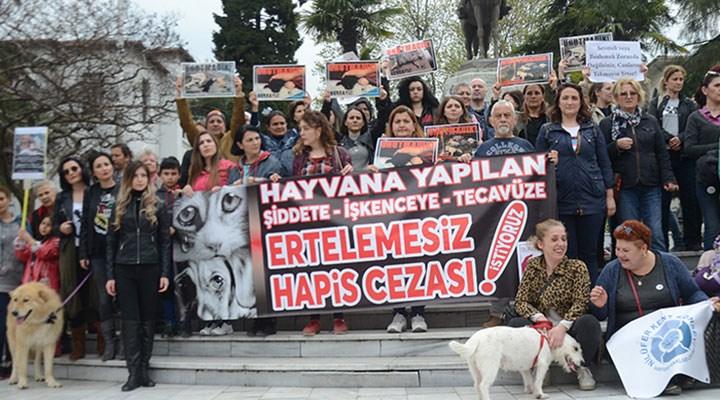 Barolardan hayvan hakları kanunu çağrısı:Avcılık ve av turizmi tamamen yasaklanmalı.