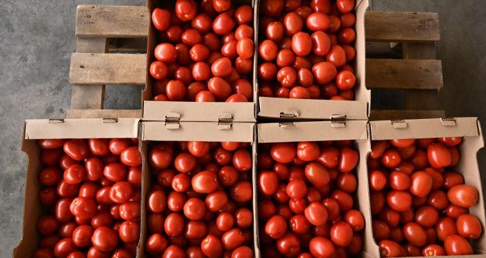 Rusya ,Ermenistan'dan domates ve biber sevkiyatına izin verdi