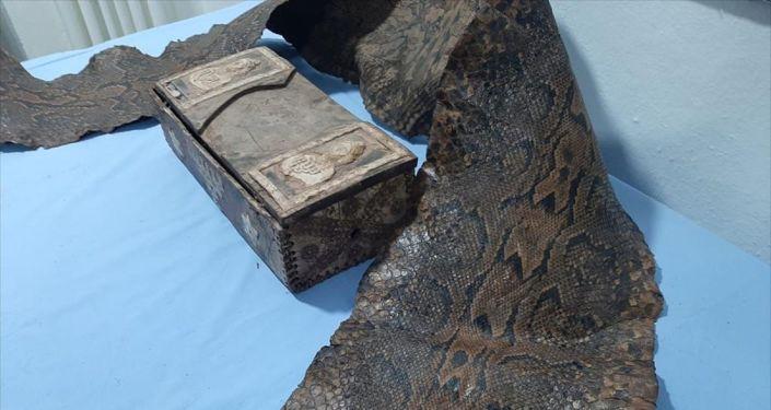 Üzerinde İbranice yazıların bulunduğu tarihi eser niteliğinde piton yılanı derisi yakalandı