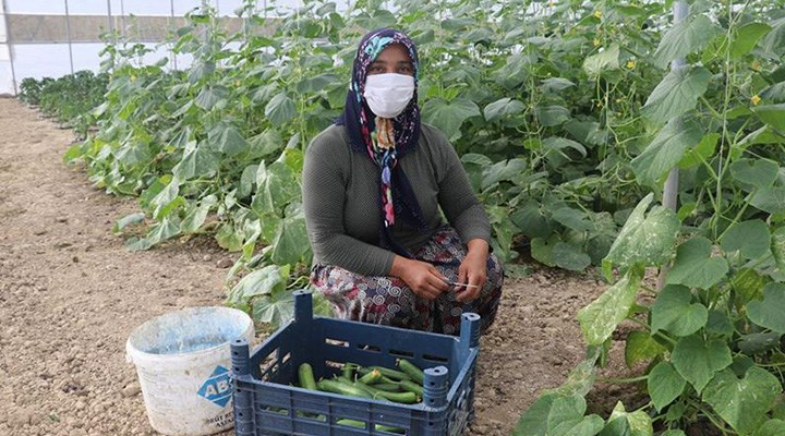 Tarım Kredi borçlusu çiftçiye yapılandırma oyunu