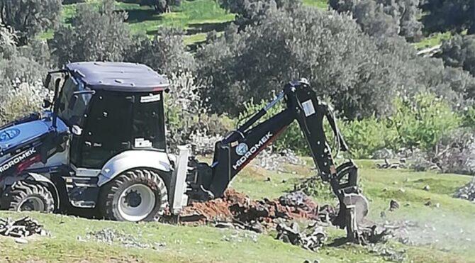 TOKİ için 200 adet zeytin ağaçlarını kestiler