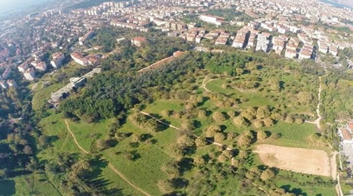 Validebağ için bilirkişi raporu çıktı: Millet bahçesi korunun çöküşünü hızlandırır