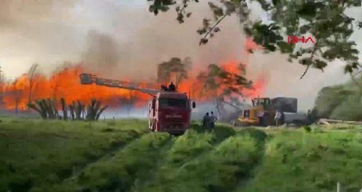 Afyon'da Biyokütle Enerji Santrali'nde yangın