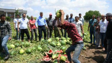 AKP'li çiftçinin Bakan Pakdemirli'ye isyanı: Yaktınız bizi, mahvettiniz!
