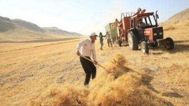 Borçla ayakta kalmaya çalışan kazanamayan çiftçi tarımdan kaçıyor