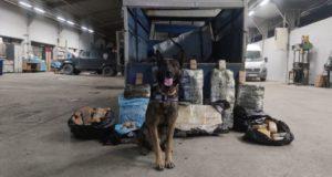 Narkotik köpeği 'Rexo' sayesinde Van'da 216 kilo eroin ele geçirildi