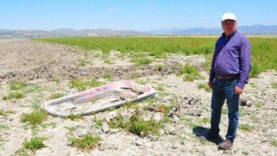 Suyu çekilen göl arazisinde kaçak yapılan tarıma ceza