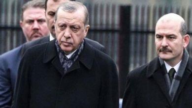 """Deniz Zeyrek:""""Erdoğan, Süleyman Soylu'yu Sedat Peker hakkında konuşmaması için uyarmış"""""""