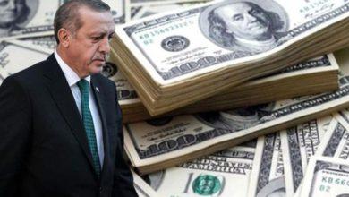 Erdoğan'ın Merkez Bankası'nın döviz rezervi iddiası gerçeği yansıtıyor mu?