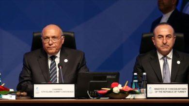 Mısır Dışişleri Bakanı Samih Şukri: Türkiye ile ilişkilerimiz kademeli olarak ilerleyecek