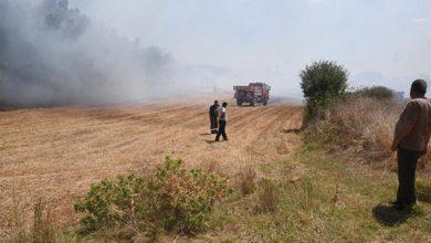 Orman yangınına neden olan şahsa 155 bin lira tazminat cezası