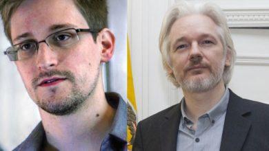 Yazılımcı McAfee'nin ölümünün ardından Assange'a uyarı: 'Sıradaki sen olabilirsin'