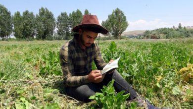 Lise son sınıf öğrencisi, tarlada çapa yaparak yazdığı kitabını bastırdı