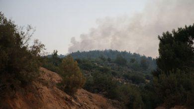 Mersin ve Hatay'daki yangınlarla ilgili 4 kişi gözaltına alındı