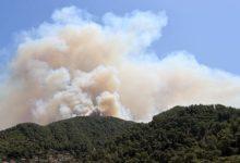Orman Genel Müdürlüğü: 79 yangından 66'sının kontrol altına alındığını bildirdi