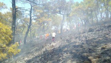 Kemer'de üç noktada çıkan yangınlar söndürüldü