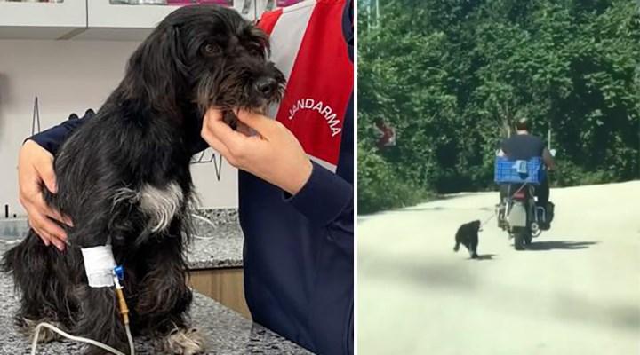 Motosikletin arkasına bağladığı köpeğe eziyet eden acımasız adam yakalandı