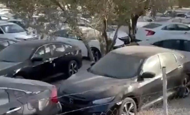 Stoklarda yok denılen yüzlerce Honda Civic'in bir tarlada bekletilmesi tepkiye neden oldu